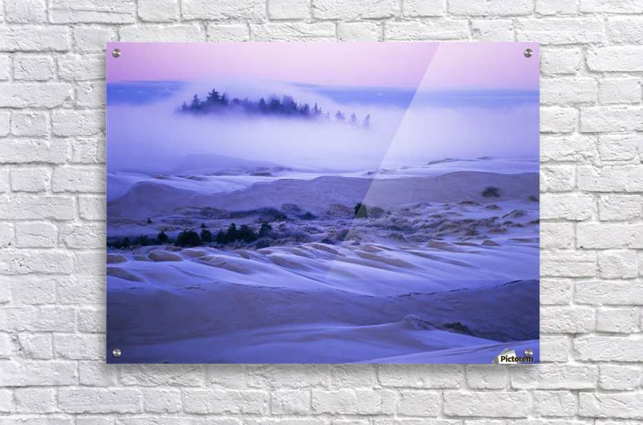 Fog over the sand dunes at dawn after a heavy frost; Lakeside, Oregon, United States of America  Acrylic Print