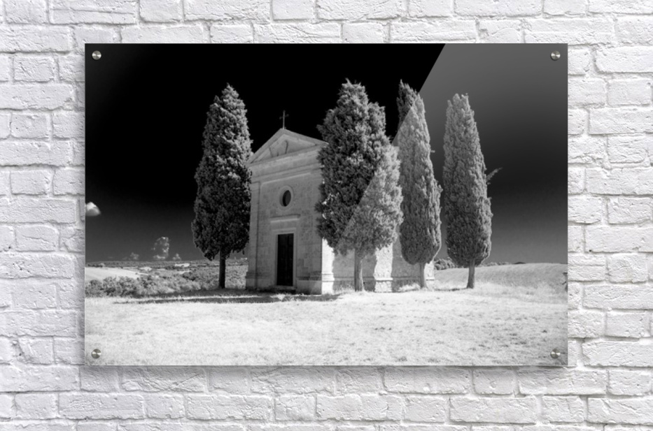 Tuscany Montalcino  Acrylic Print