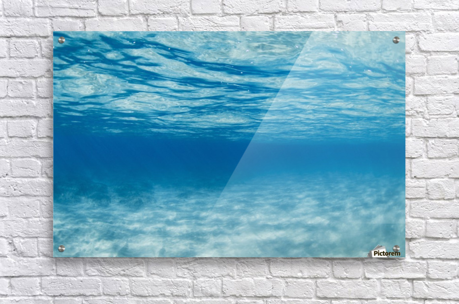 Underwater  Acrylic Print