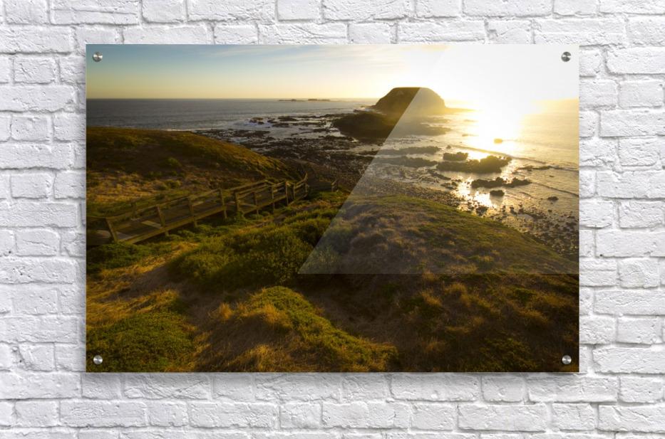Phillip Island  Acrylic Print