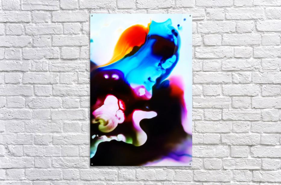 MPS-008  Acrylic Print