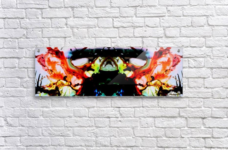 MPS-021  Acrylic Print