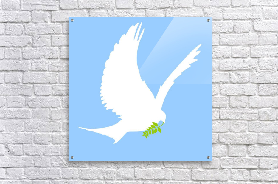 Dove And Olive Branch  Acrylic Print