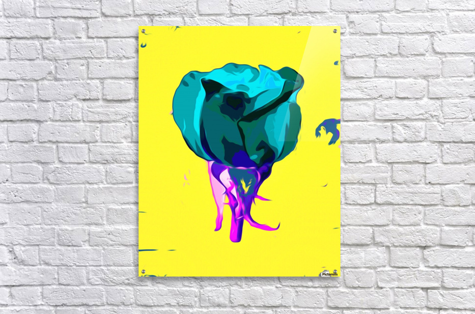 green rose with purple stem and yellow background  Acrylic Print