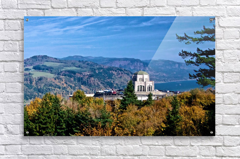 Crown Point overlooking Columbia River Gorge with fall colors  Acrylic Print
