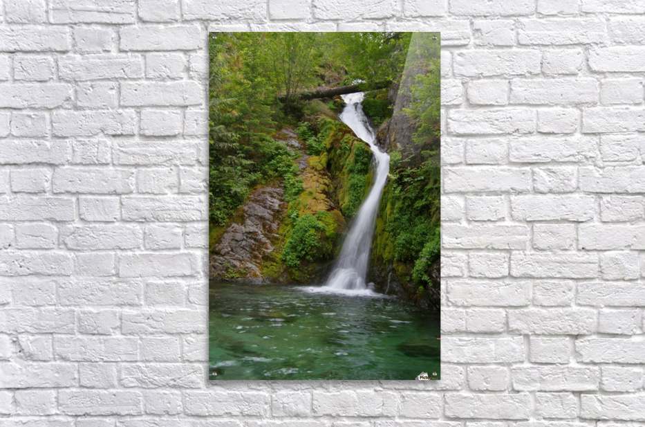 Full view of Sullivan Falls in the Opal Creek Wilderness, Oregon  Acrylic Print