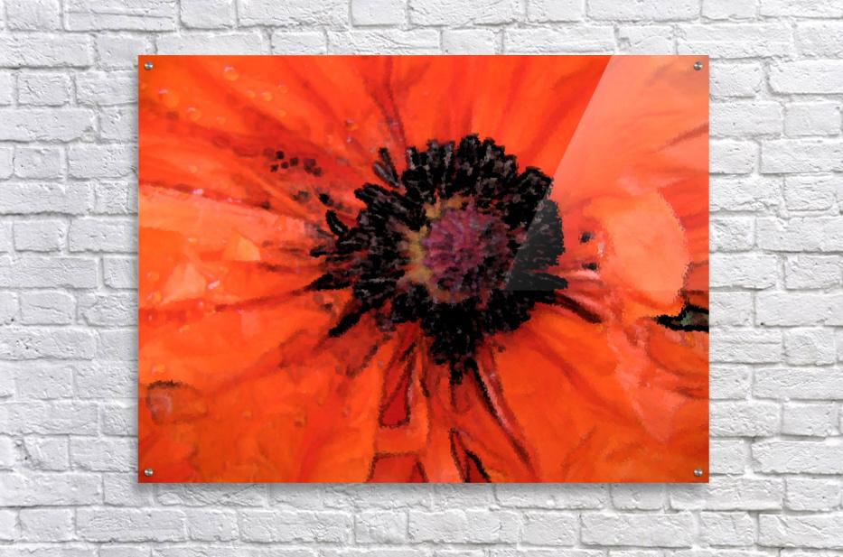 poppies will make you sleep  Acrylic Print