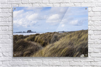 Grass and clouds frame a scene along the coast; Bandon, Oregon, United States of America  Acrylic Print