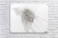 Jellyfish against a white background  Acrylic Print