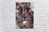 Illustration of a lion's face with colourful splashes  Acrylic Print