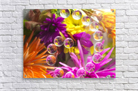 FLOWERS REFRACTION 13  Acrylic Print