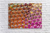 FLOWERS REFRACTION 4  Acrylic Print