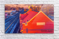 Lonoke, AR   Red Oak   Acrylic Print