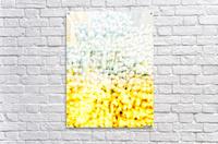 BURST - YELLOW & WHITE  Acrylic Print