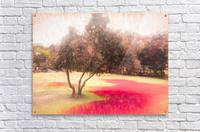 The Raanana Park 1  Acrylic Print