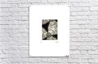 BLUEPHOTOSFORSALE 039_1517325176.6  Acrylic Print