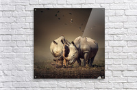 Two Rhinoceros with birds  Acrylic Print