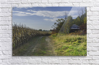A sunny autumn day  Acrylic Print