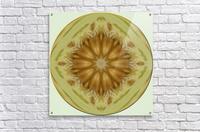 melon 1  Acrylic Print