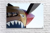 P-40 Warhawk Nose  Acrylic Print