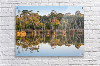 Evening river bank with glassy reflection  Acrylic Print