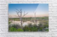 Wetlands at sunset with smoke haze.  Acrylic Print