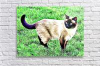 CAT3  Acrylic Print
