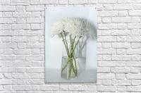 Mum Flower in a Vase  Acrylic Print