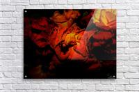 D (5)  Acrylic Print