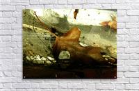 D (1)  Impression acrylique