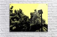 D (10)  Impression acrylique