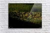 G (9)  Acrylic Print