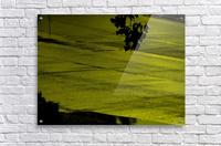 H (12)  Acrylic Print