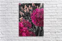 Collection Vinyasa 1  Impression acrylique