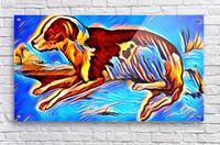 Dog_Splash_OSG  Acrylic Print