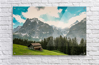 Hut on a hill  Acrylic Print