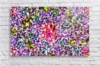 Coalesce  Acrylic Print