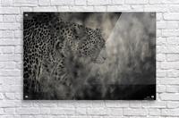 Hunter  Acrylic Print