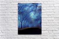 study in blue  Acrylic Print