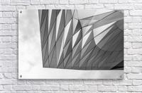 Musée des Confluences  Acrylic Print