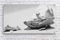 Humanity 046  Acrylic Print