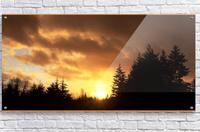 Sour Set  Acrylic Print