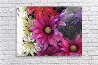 Rainbow of flowers  Acrylic Print