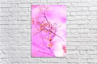 paint it pink   Acrylic Print