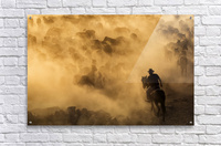 Cappadocia wild horses  Acrylic Print