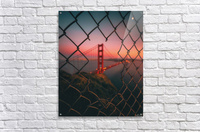 Golden Gate Caged  Acrylic Print