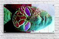 1540675361047  Acrylic Print