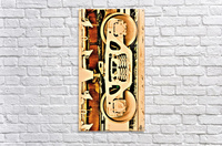 DSC_0214 (4)_LI  Acrylic Print