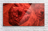 1542010282905  Acrylic Print