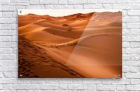 Beautiful Nature Landscape Hot Sun Desert Sahara Sand Dune Dunes Hot Climate Photography landscape photo Scenery  Acrylic Print